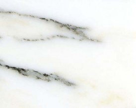 Bianco arabescata